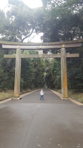 tori gate